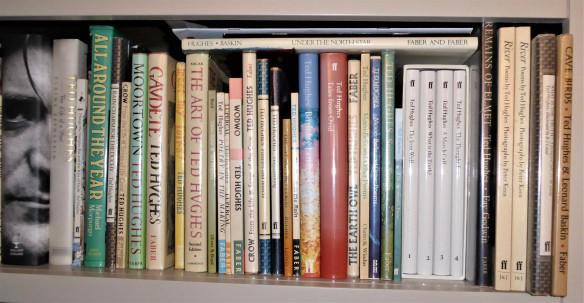 ted shelf